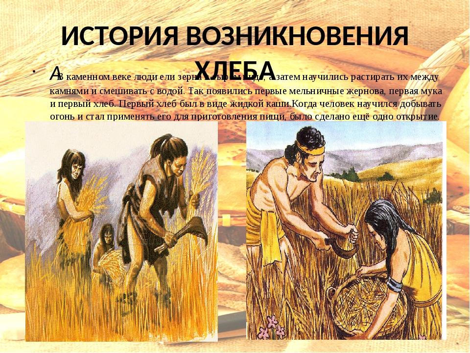 профессионалы картинки история возникновения хлеба днём
