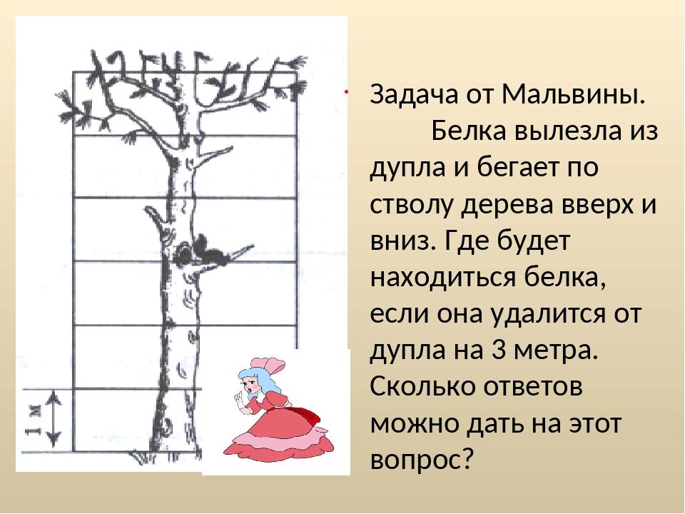 Задача от Мальвины. Белка вылезла из дупла и бегает по стволу дерева вверх и...