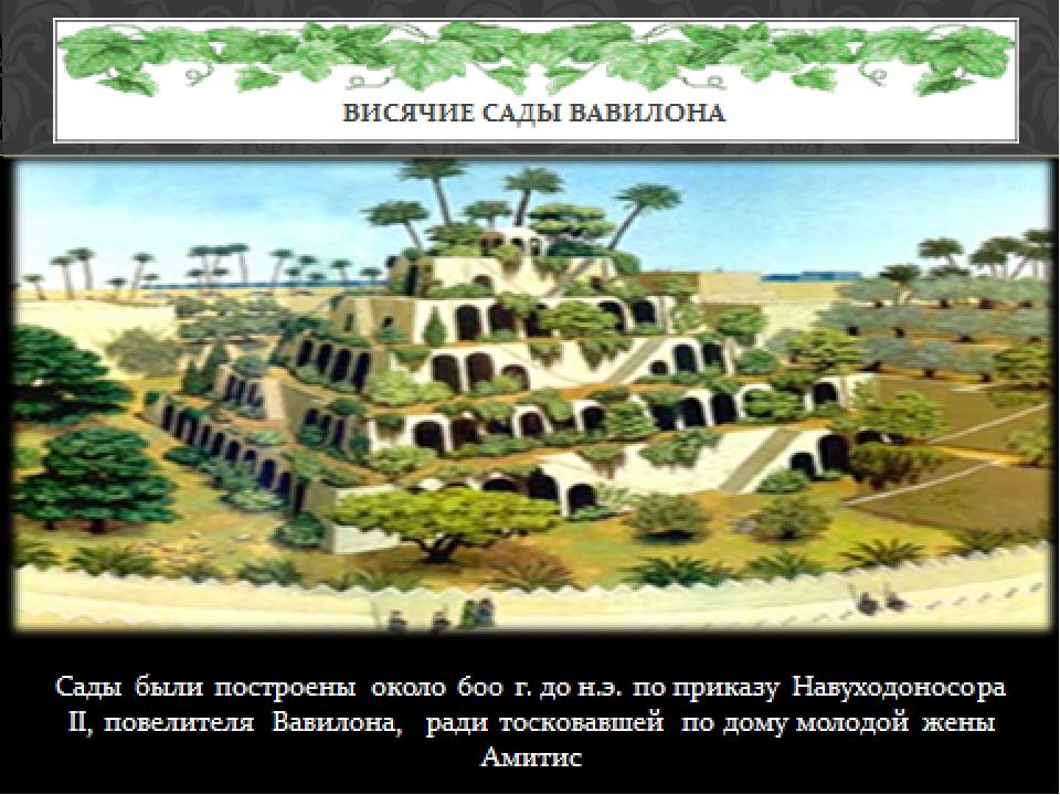 Сады были построены около 600 г. до н.э. по приказу Навуходоносора II, повели...