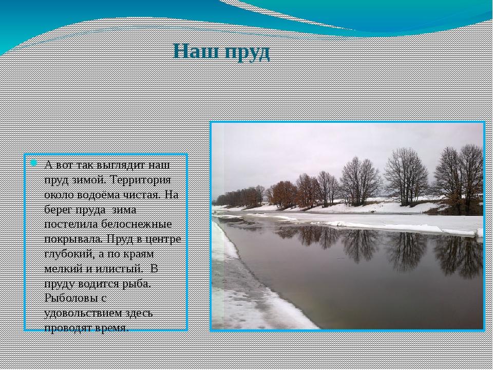 Наш пруд А вот так выглядит наш пруд зимой. Территория около водоёма чистая....