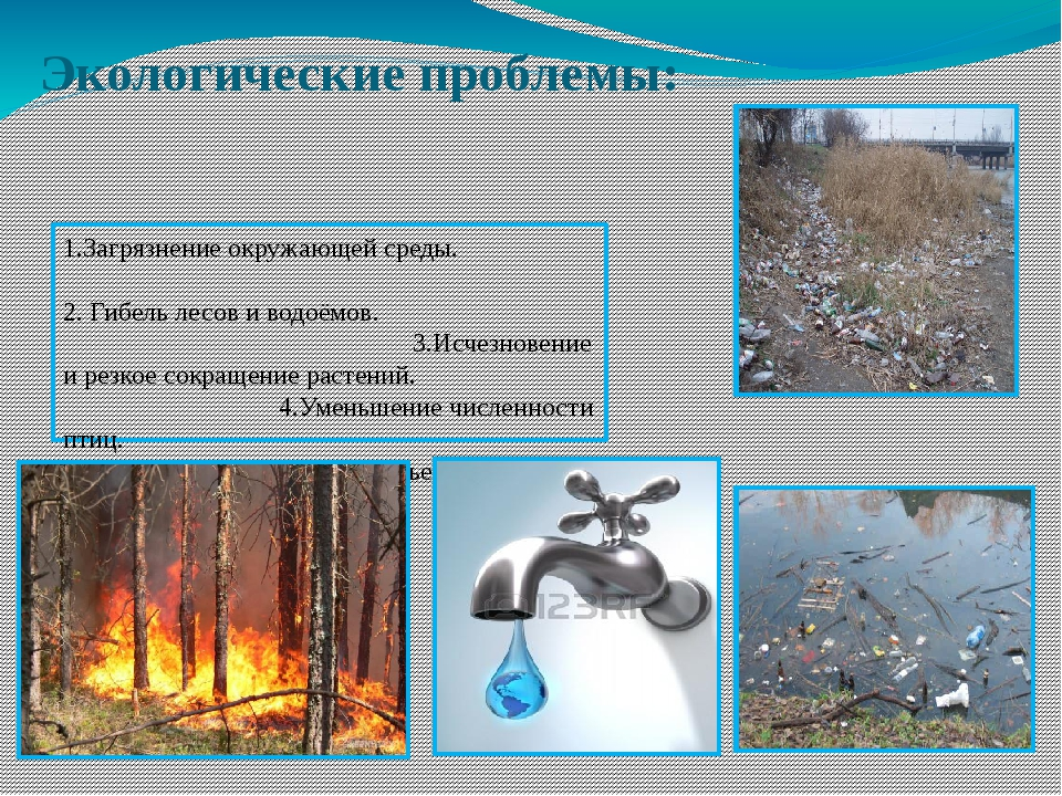Экологические проблемы: 1.Загрязнение окружающей среды. 2. Гибель лесов и вод...