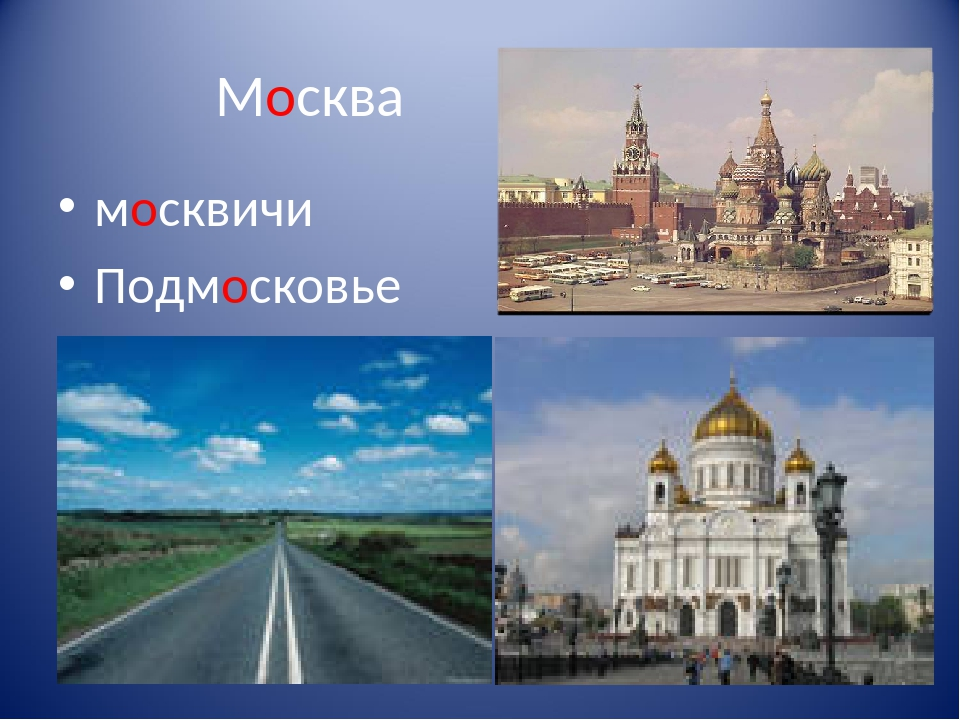Москва москвичи Подмосковье