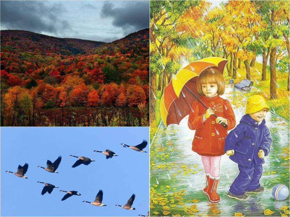 картинка про осень для малышей всего