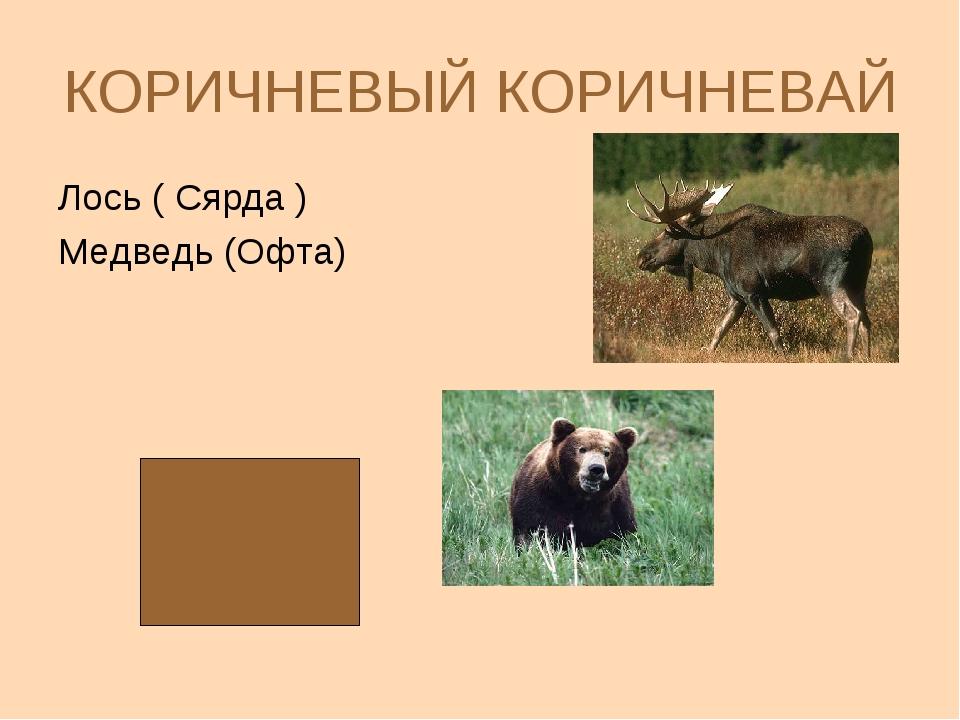 КОРИЧНЕВЫЙ КОРИЧНЕВАЙ Лось ( Сярда ) Медведь (Офта)