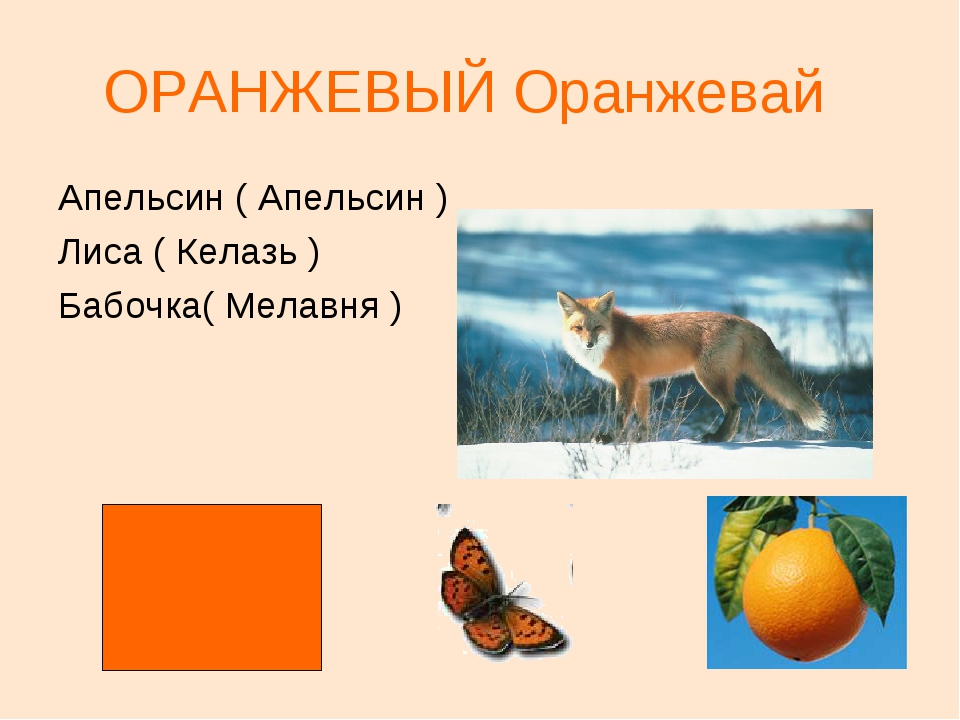 ОРАНЖЕВЫЙ Оранжевай Апельсин ( Апельсин ) Лиса ( Келазь ) Бабочка( Мелавня )
