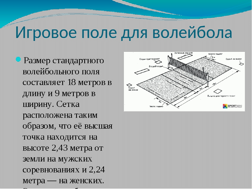 Игровое поле для волейбола Размер стандартного волейбольного поля составляет...