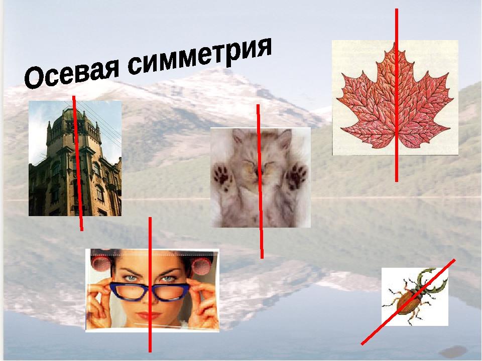 даже осевая симметрия в природе картинки примеры второе сооружение