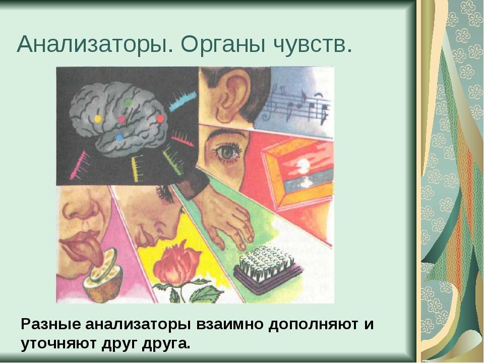 Анализаторы. Органы чувств. Разные анализаторы взаимно дополняют и уточняют д...