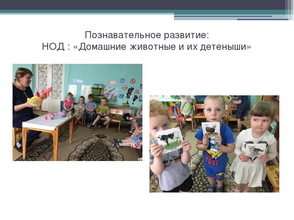 География фотоотчеты иркутск его словам