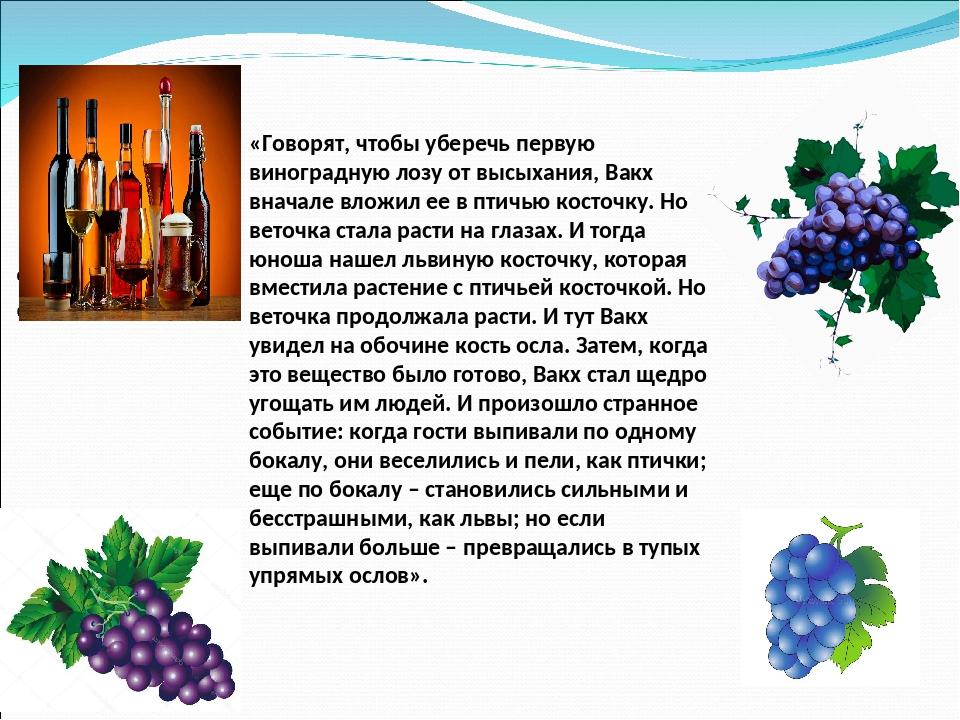 «Говорят, чтобы уберечь первую виноградную лозу от высыхания, Вакх вначале вл...