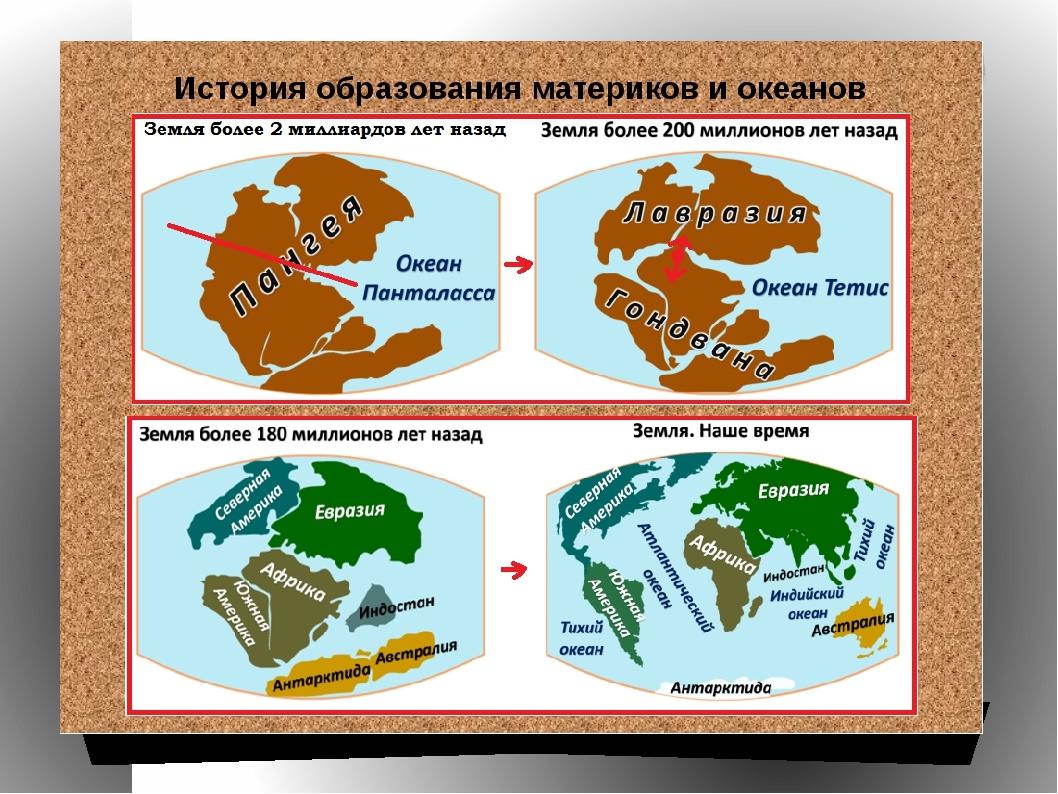 Какими были материки много миллионов лет назад