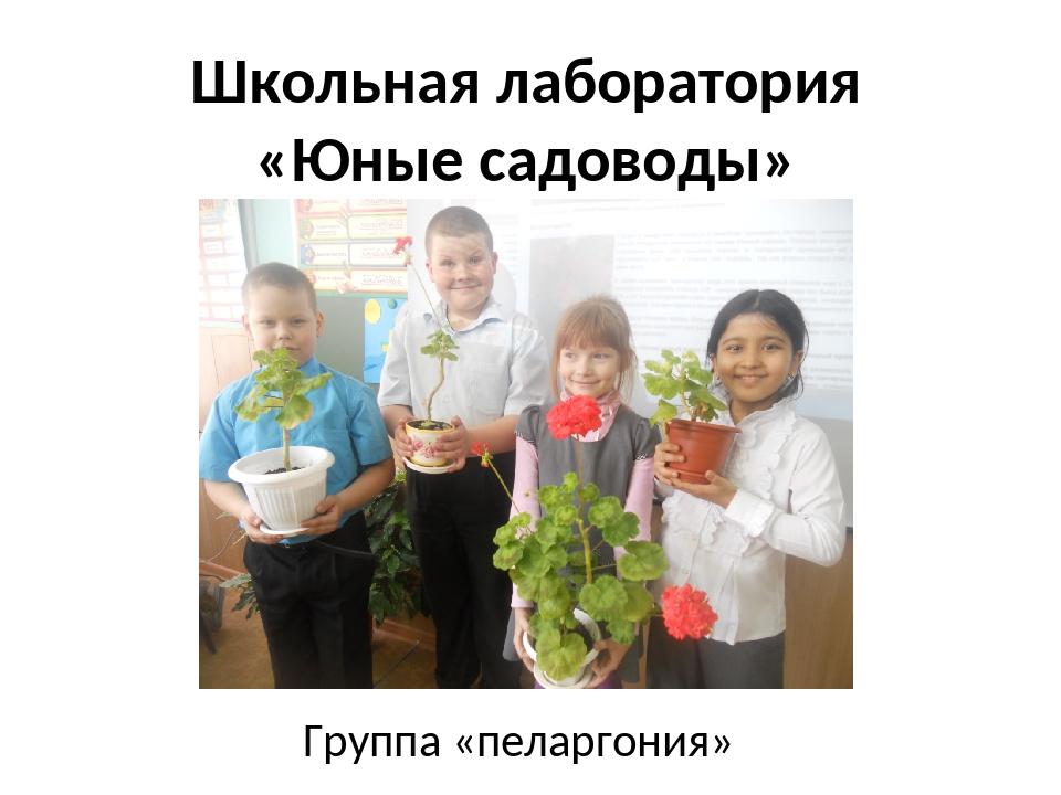 Школьная лаборатория «Юные садоводы» Группа «пеларгония»