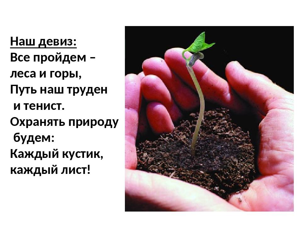 Наш девиз: Все пройдем – леса и горы, Путь наш труден и тенист. Охранять прир...