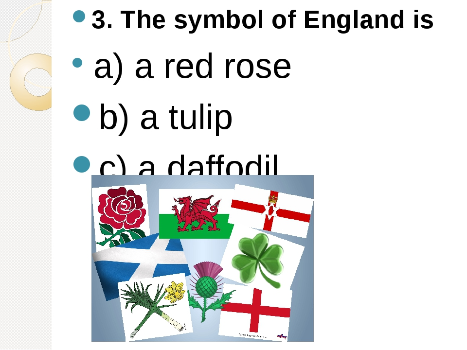 3. The symbol of England is a) a red rose b) a tulip c) a daffodil.