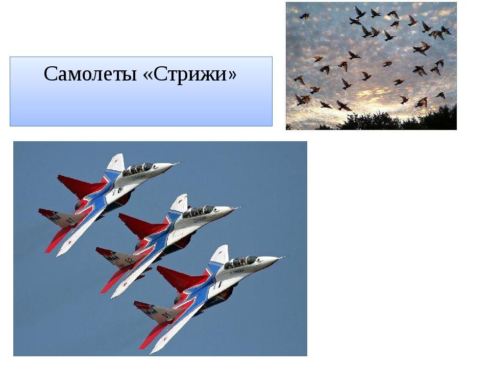 Самолеты «Стрижи»