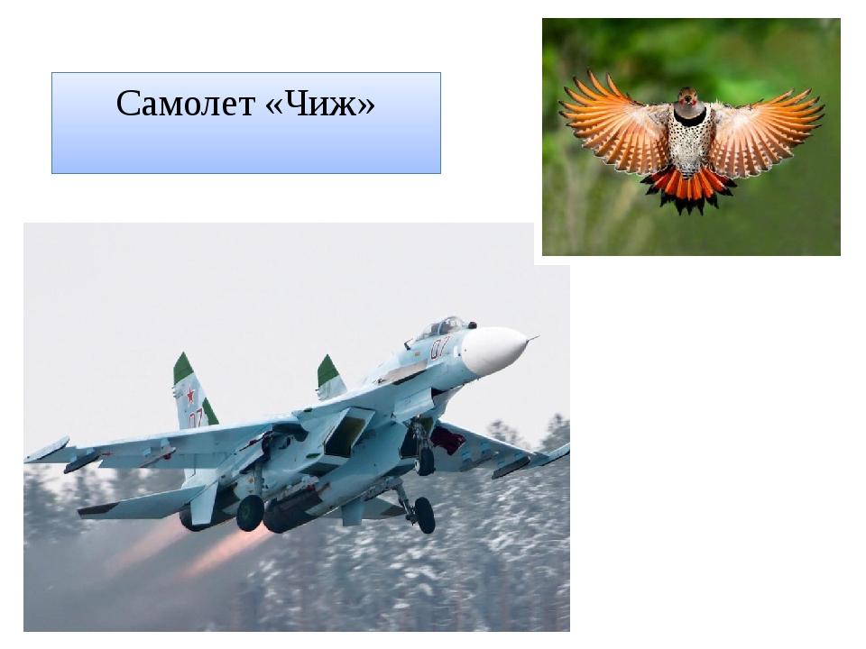 Самолет «Чиж»