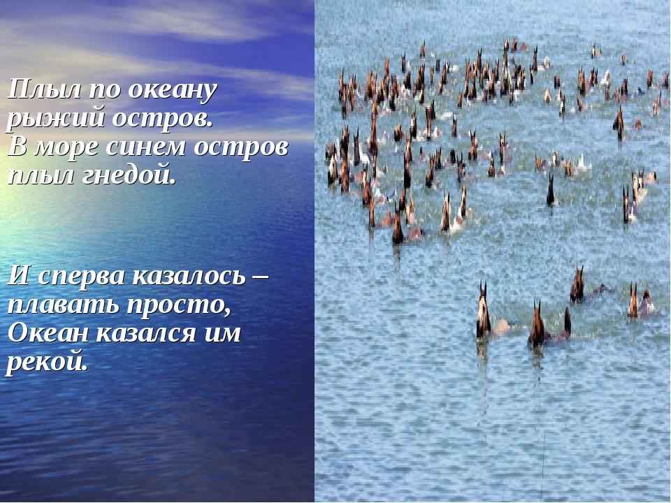 Плыл по океану рыжий остров. В море синем остров плыл гнедой. И сперва казал...