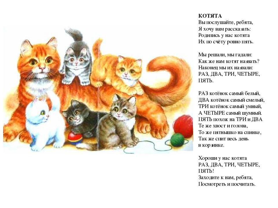 Стихи в картинках про котенка