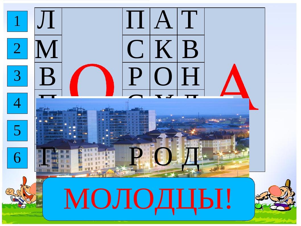 Инструмент для обработки земли. Столица России. Крупная птица с серо-чёрным о...