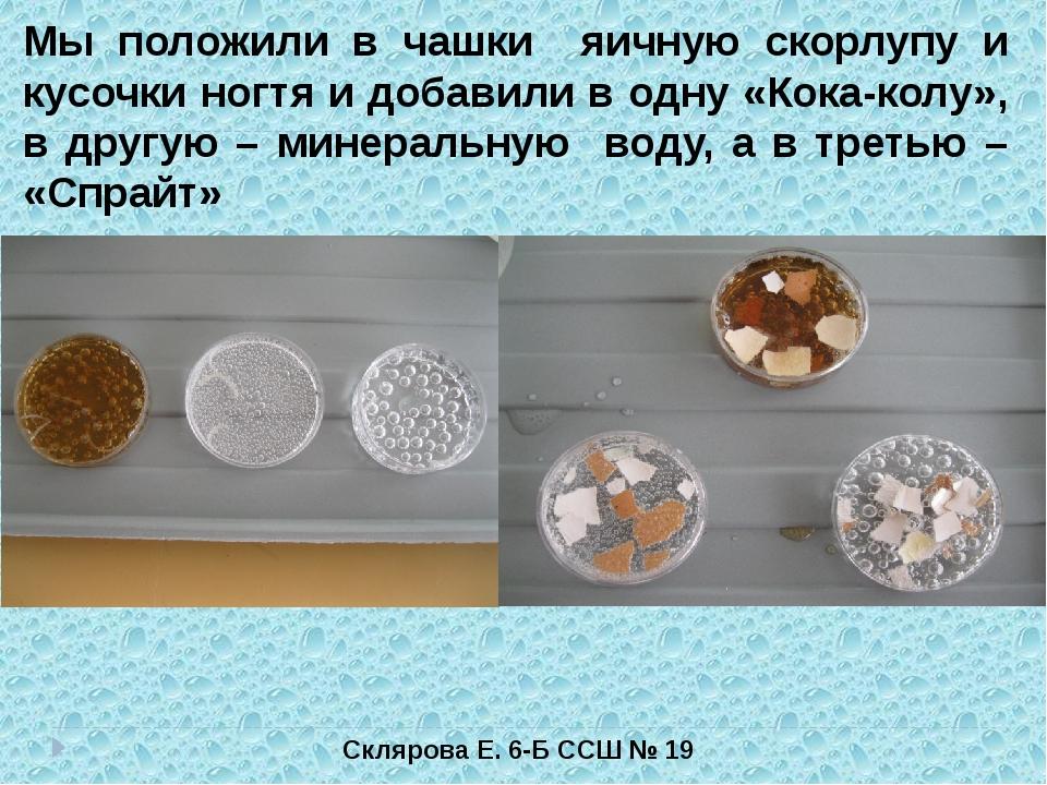 Склярова Е. 6-Б ССШ № 19 Мы положили в чашки яичную скорлупу и кусочки ногтя...