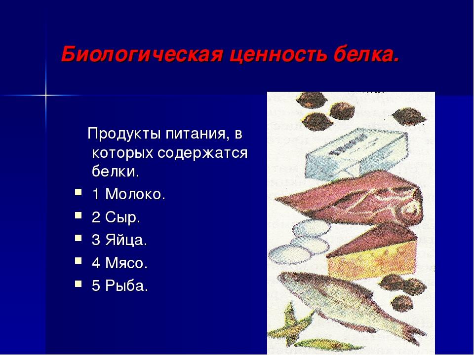 Биологическая ценность белка. Продукты питания, в которых содержатся белки. 1...