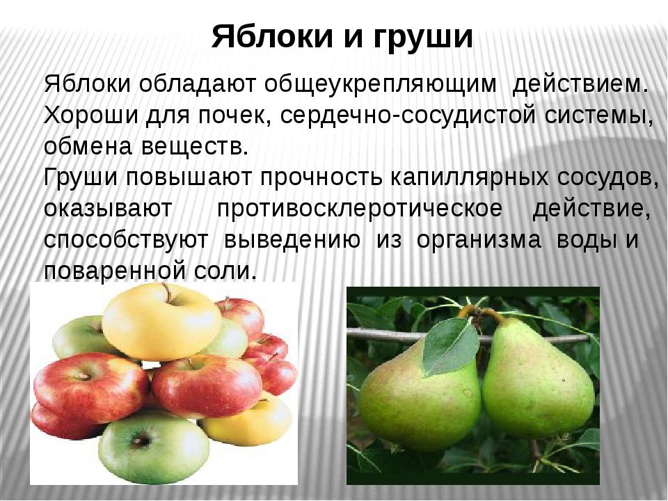 Яблоки и груши Яблоки обладают общеукрепляющим действием. Хороши для почек,...