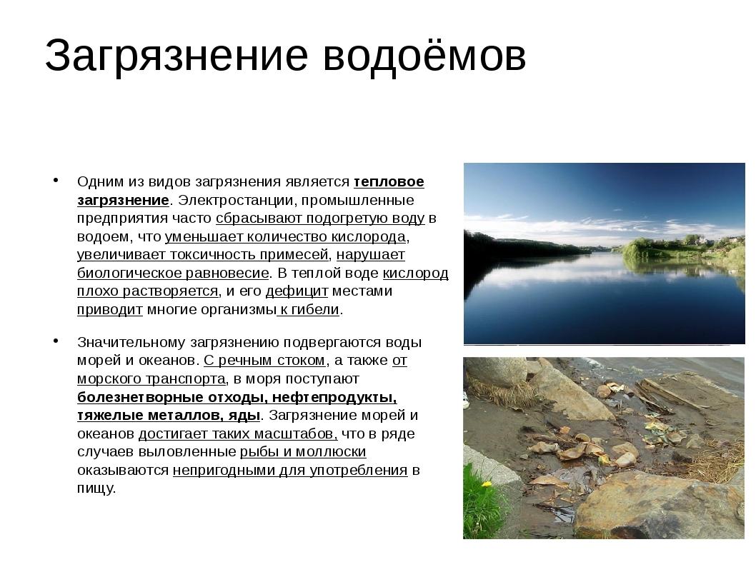 Загрязнение водоёмов Одним из видов загрязнения является тепловое загрязнение...