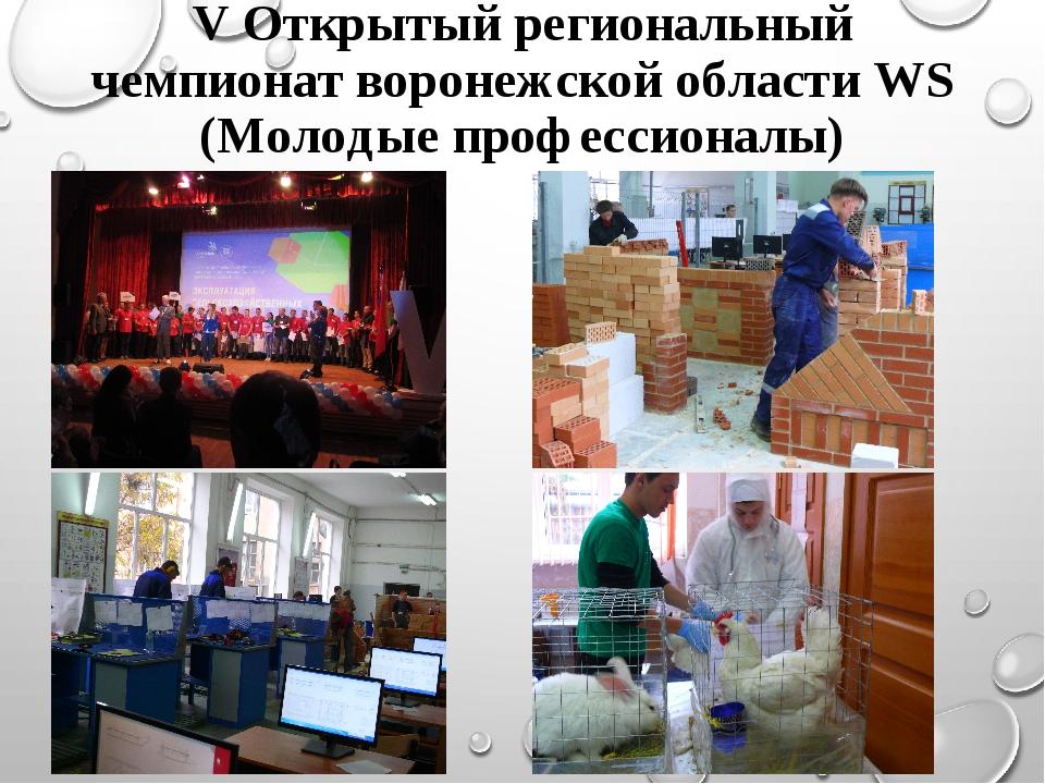 V Открытый региональный чемпионат воронежской области WS (Молодые профессиона...
