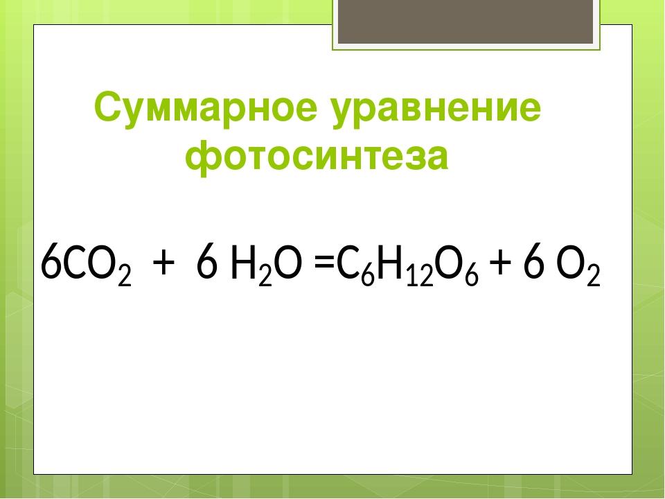 формула фотосинтеза у растений взаимодействовать бизнесом