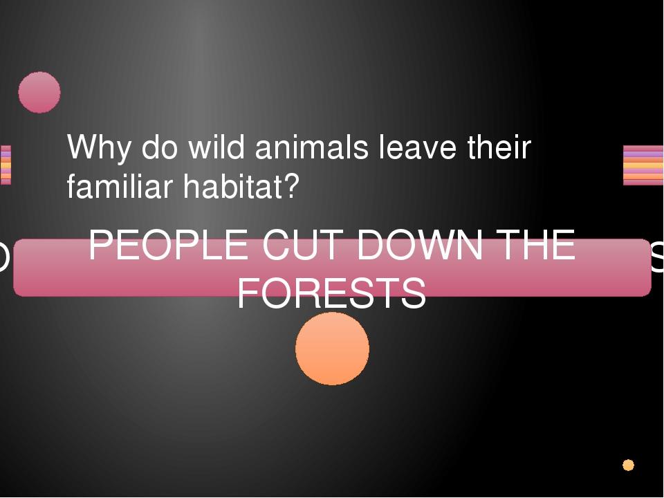Why do wild animals leave their familiar habitat? OPLEPE TUC WOND THE FESORTS...