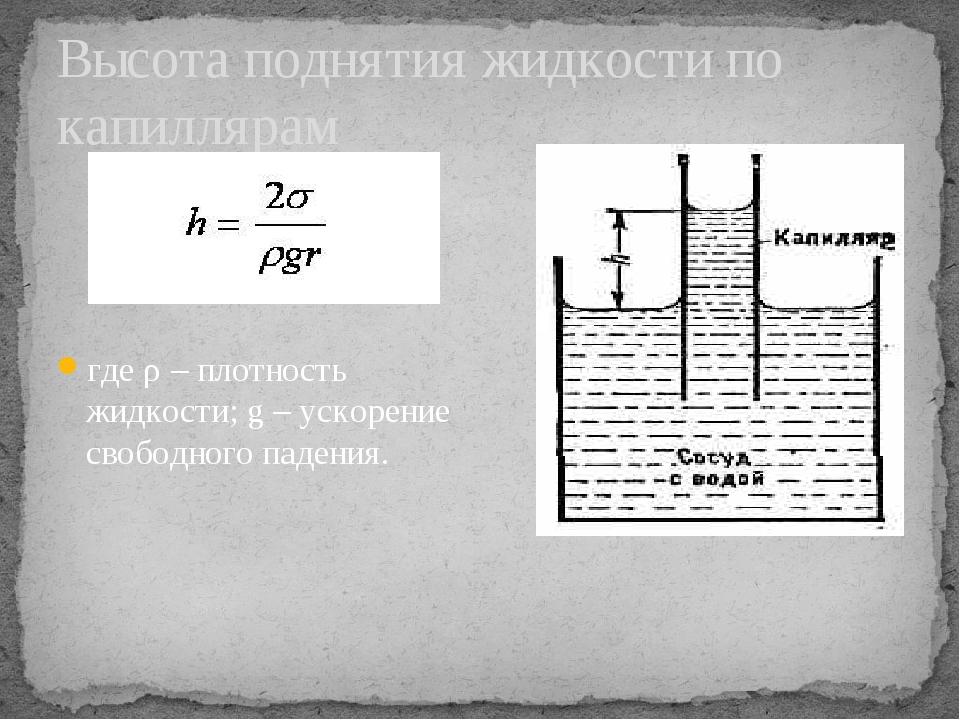 Высота поднятия жидкости по капиллярам где ρ – плотность жидкости; g – ускоре...
