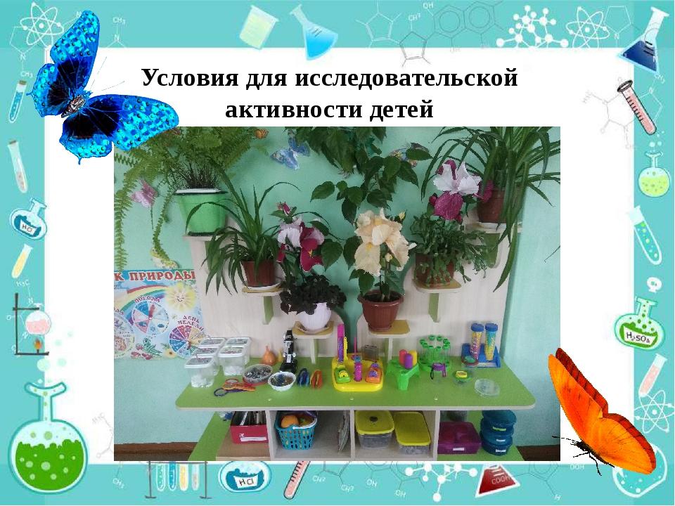 Условия для исследовательской активности детей