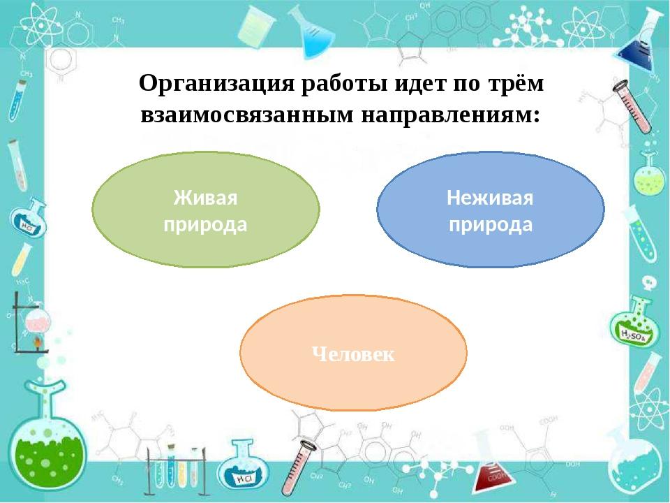 Организация работы идет по трём взаимосвязанным направлениям: Живая природа Н...