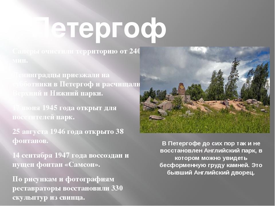 Саперы очистили территорию от 240 мин. Ленинградцы приезжали на субботники в...