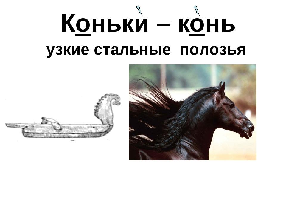 Коньки – конь узкие стальные полозья
