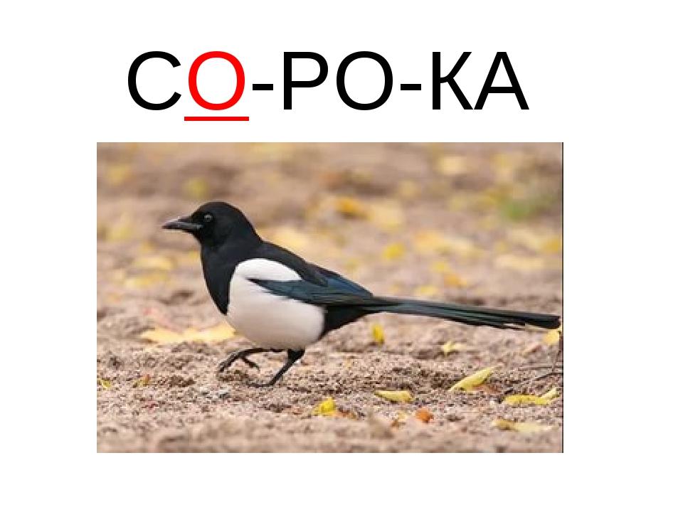 СО-РО-КА