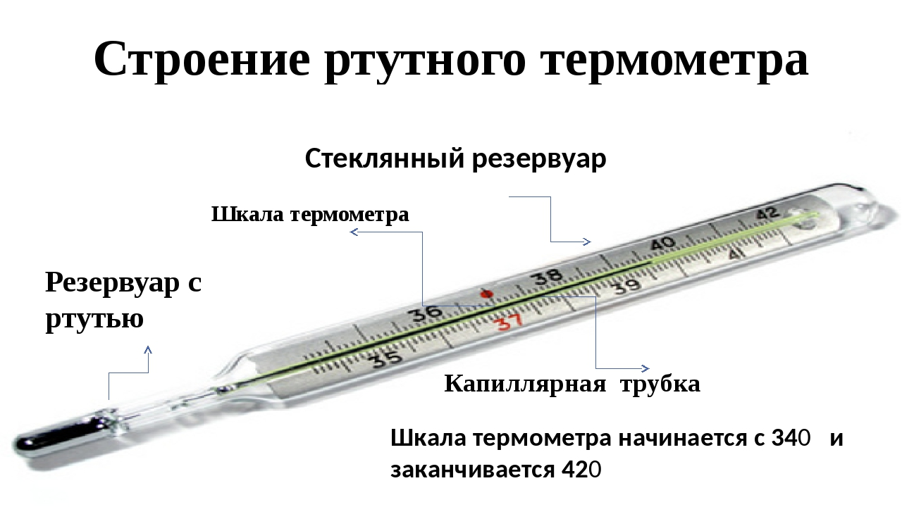 Строение ртутного термометра Стеклянный резервуар Капиллярная трубка Резервуа...