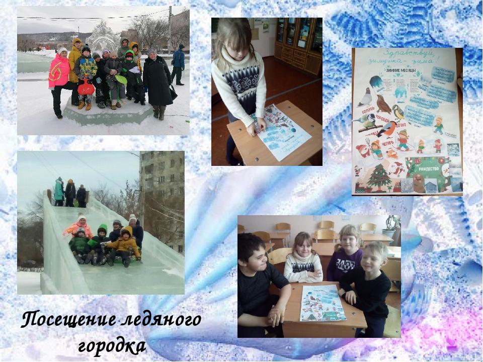 Посещение ледяного городка