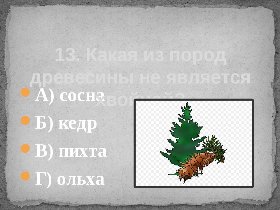 А) сосна Б) кедр В) пихта Г) ольха 13. Какая из пород древесины не является х...