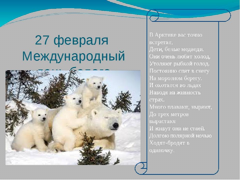 27 февраля Международный день белого медведя В Арктике вас точно встретят, Д...