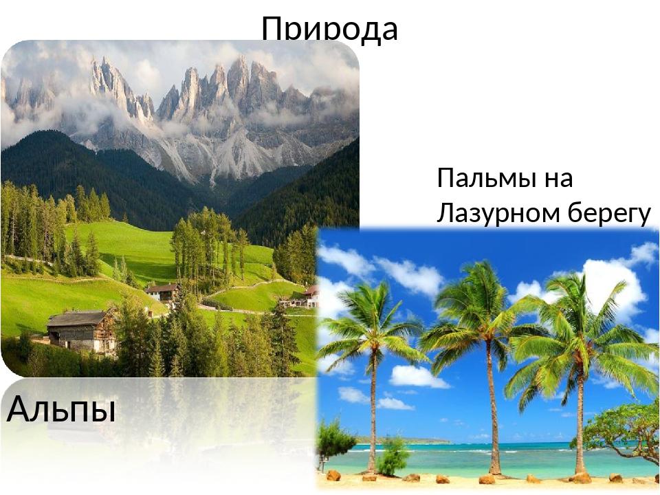 Природа Альпы Пальмы на Лазурном берегу