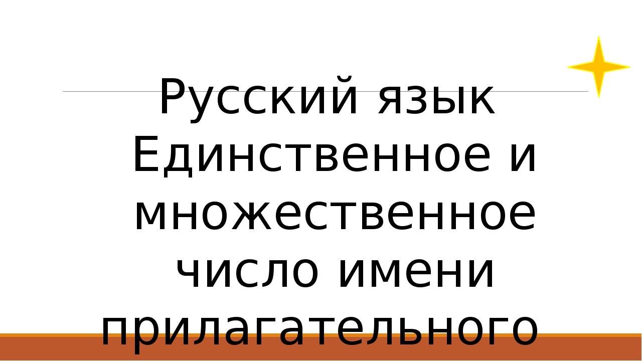 Русский язык Единственное и множественное число имени прилагательного