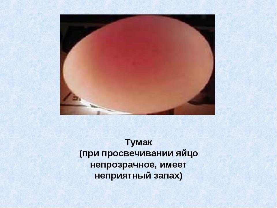 Тумак (при просвечивании яйцо непрозрачное, имеет неприятный запах)