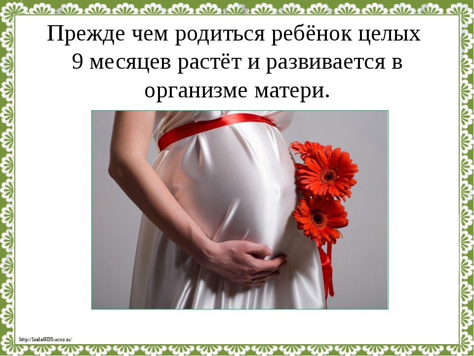 Прежде чем родиться ребёнок целых 9 месяцев растёт и развивается в организме...