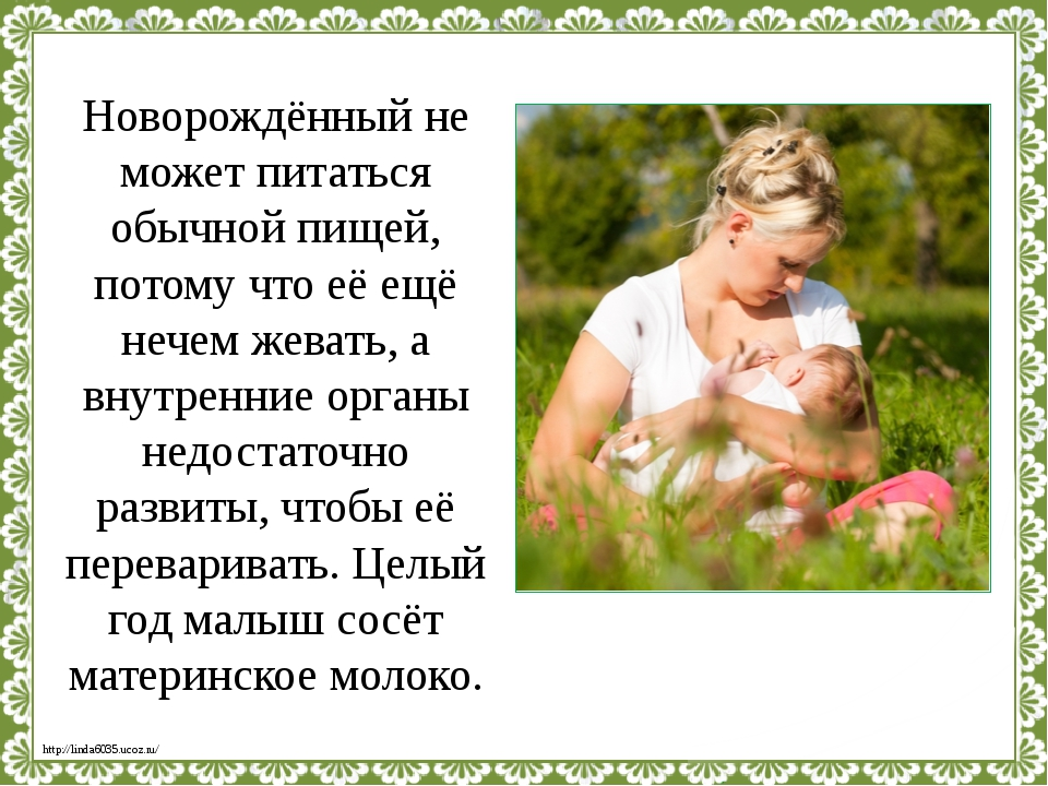 Новорождённый не может питаться обычной пищей, потому что её ещё нечем жевать...