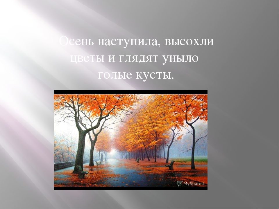 Осень наступила, высохли цветы и глядят уныло голые кусты.