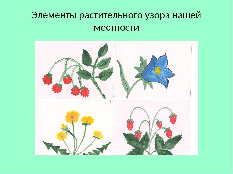 Элементы растительного узора нашей местности