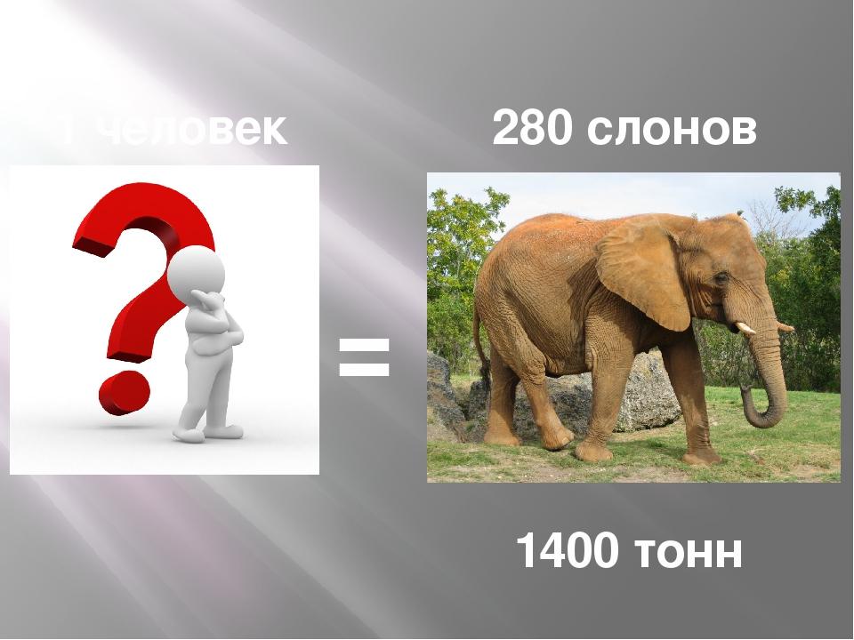 280 слонов = 1400 тонн 1 человек