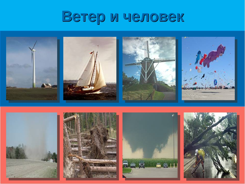 Ветер и человек