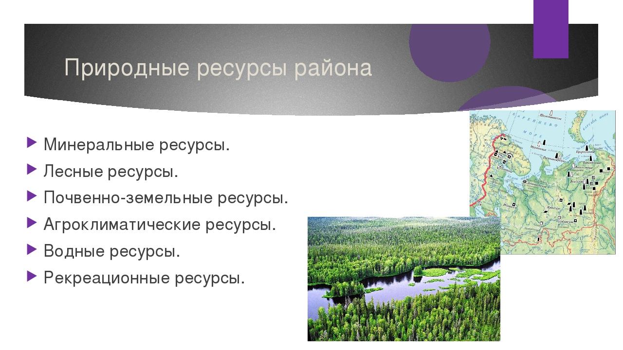 Природные ресурсы района Минеральные ресурсы. Лесные ресурсы. Почвенно-земель...